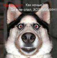 Влад Демерлий, 10 июля 1994, Луганск, id206787747