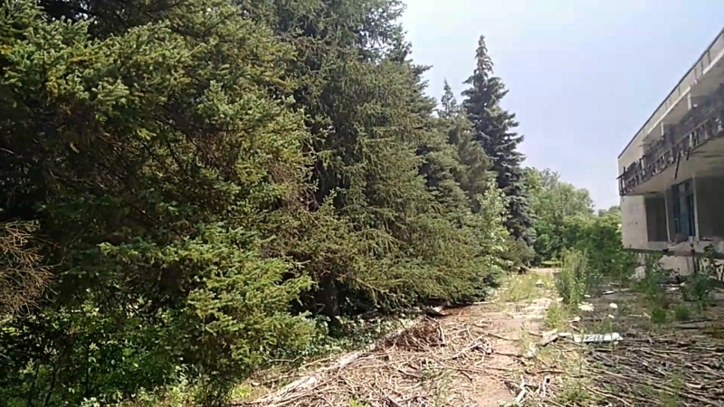 Лагерь Барвинок (Нижняя Крынка)