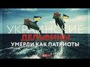 Украинские дельфины умерли как патриоты Обзор ИноСми