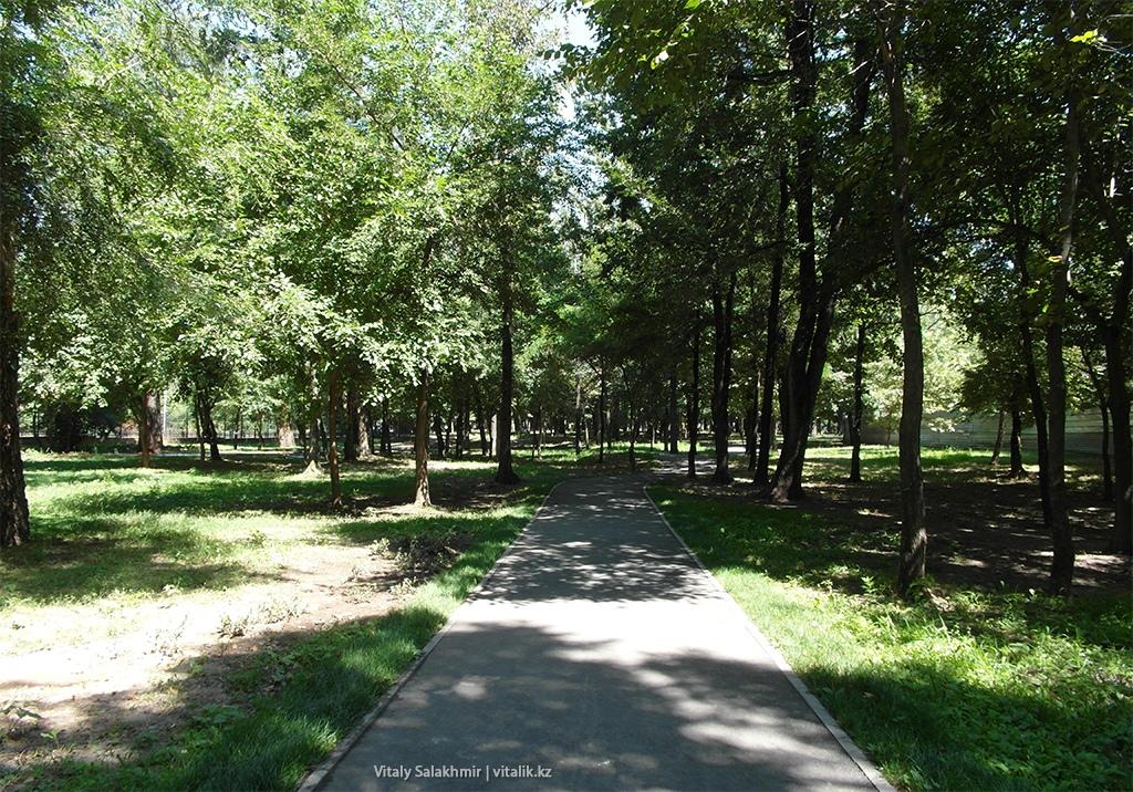 Зеленая аллея Парк Горького 2018