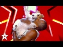 WOOF! The Happiest Dog on Got Talent Global!