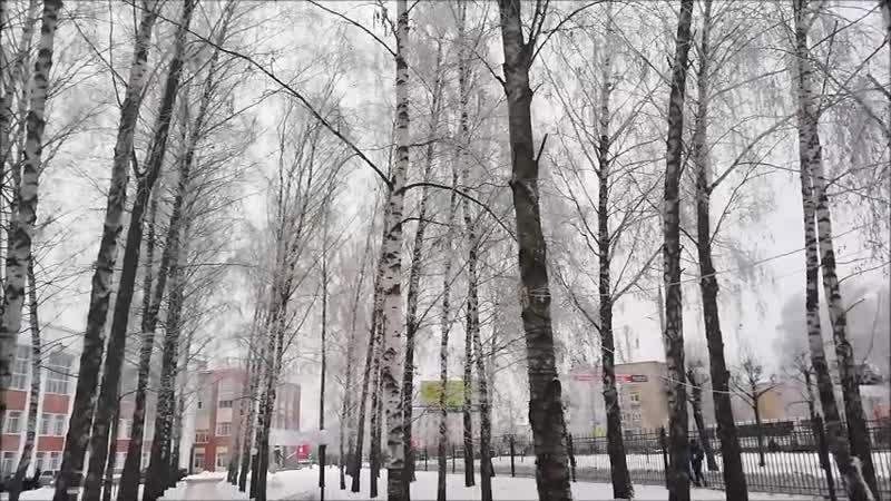 Изморозь на деревьях в Тамбове 17.12.2018