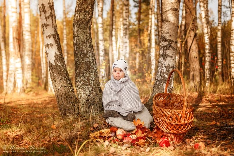Татьяна Шмелёва |