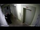 Запись с камеры наблюдения в подъезде
