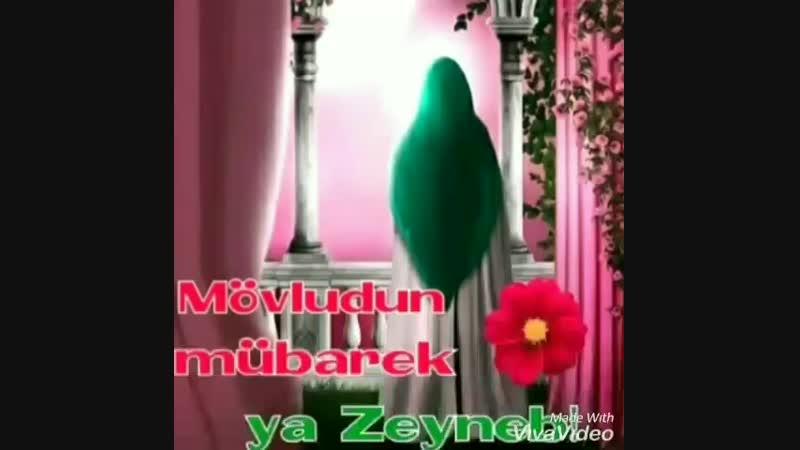 VID_27381110_041623_868.mp4