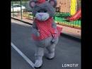 Мишки тедди Рязань для заказа 7 (996) 617-79-68