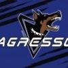 agressor.shop