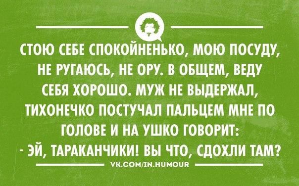 http://cs618224.vk.me/v618224486/ad1b/HNU6znSH5vg.jpg