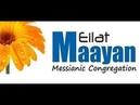 Прямой эфир Мессианская община Мааян Эйлат Источник в Эйлате