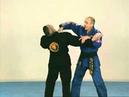 Hapkido - Démonstration de techniques self-défense