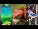 Лучшие Тик Ток Видео ❤️ Идеальные вещи которые помогут зрителям чувствовать себя комфортно 3