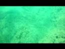 Diving, Crete
