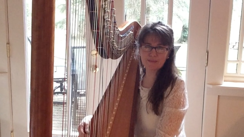 Here, There Everywhere - Beatles - harp cover