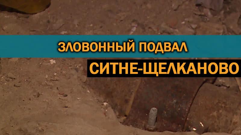 Плесень и зловоние. Старая канализация сделала невозможной жизнь жильцов дома в селе Ситне-Щелканово