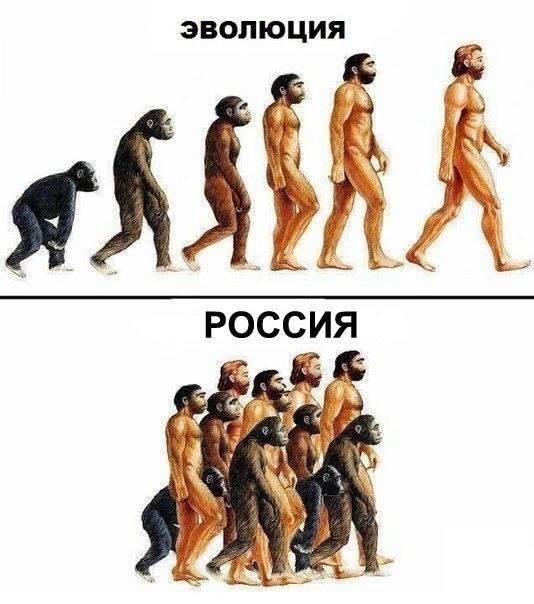 В Украине нет гражданской войны, - постпред Украины в ООН - Цензор.НЕТ 2424