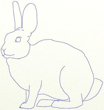 рисунок зайца карандашом: