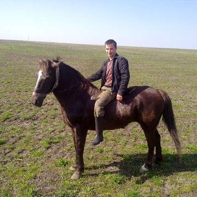 Саша Токарчук, 13 марта , Красный Луч, id173021608