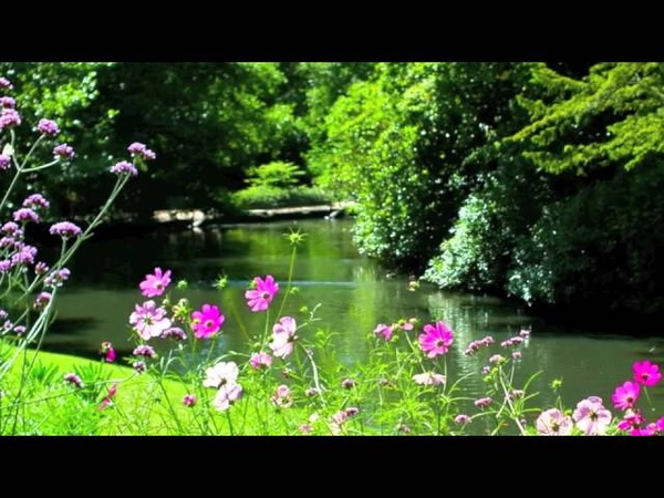 Robert Haig Coxon ~ Finding Peace