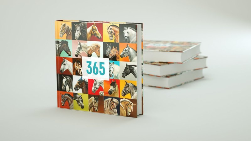 Crowdfunding. Indiegogo campaign. Artist. 365 horse portraits in 365 Days.