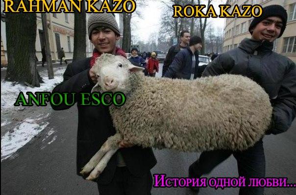 2kQuoCeCbiA.jpg