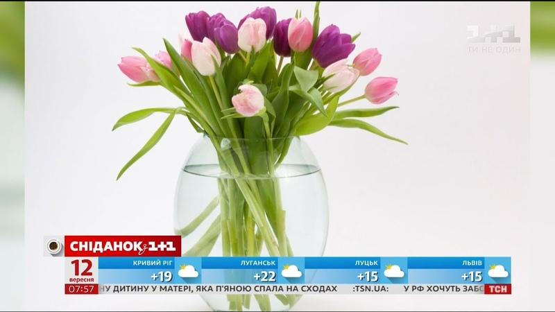 5 порад як продовжити життя квітам у вазі