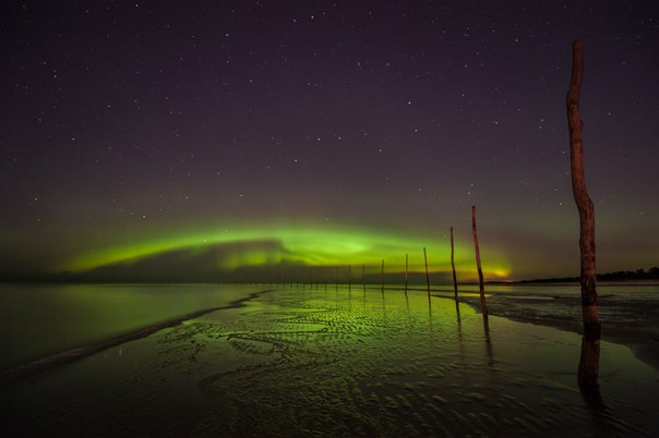 Северное сияние над Белым морем. Автор фото: Александр Постников. Спокойной ночи!