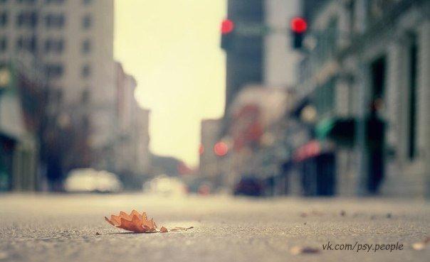 Не бойтесь в жизни перемен, Тем более неотвратимых. Они приходят в тот момент, Когда они — необходимы.