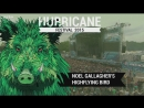 Noel Gallagher's High Flying Birds 2015 06 21 Scheessel Germany Hurricane Festival Webcast 720p