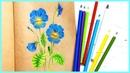 Анютины глазки рисуем и раскрашиваем цветными карандашами Подробно