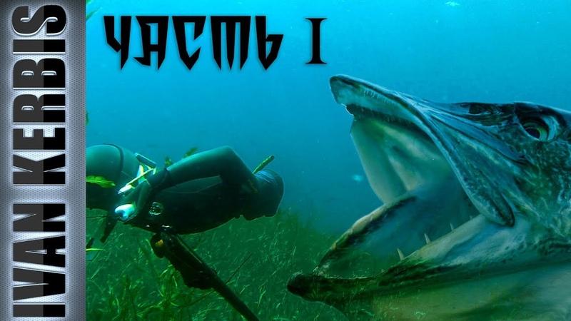 Тувинское сафари на щуку Подводная охота в Туве часть 1