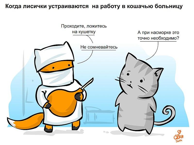 коты против лис скачать торрент - фото 9
