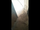 Винтовая лестница в заброшенной церкви2