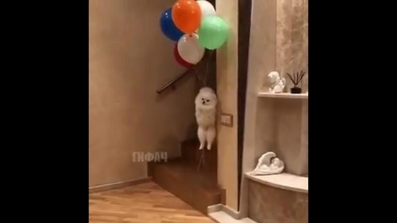 Я улетаю на большом воздушном шаре куда не знаю куда не знаю
