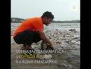 Как обычный человек очистил пляж от 5 4 млн кг отходов