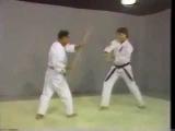 Isshin Ryu Urashi Bo Bunkai