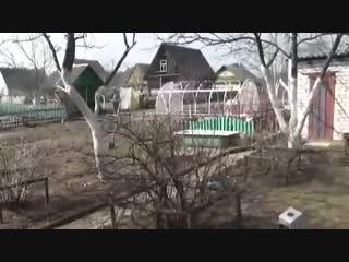Какие работы надо проводить на дачном участке весной-Дачники