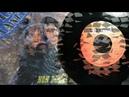 LS Manera -Non Dirmi No / Sig. Rossi (Italo-Disco on 7) -1988