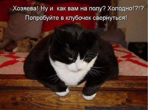 http://cs310422.vk.me/v310422082/3b96/nSUSP5bCaWc.jpg