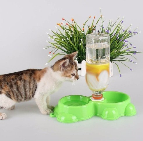Миска для котиков за 175 - 202