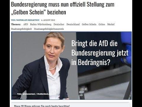 Bundesregierung muss offiziell Stellung zum gelben Schein Deutsche Staatsangehörigkeit 1934 beziehen
