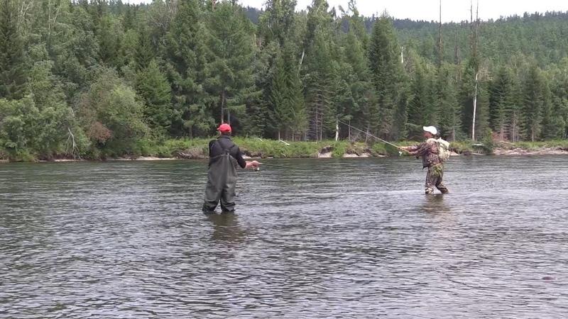 Рыбалка в Туве. Река Бий-Хем