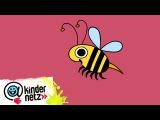 Biene  Ich kenne ein Tier  SWR Kindernetz