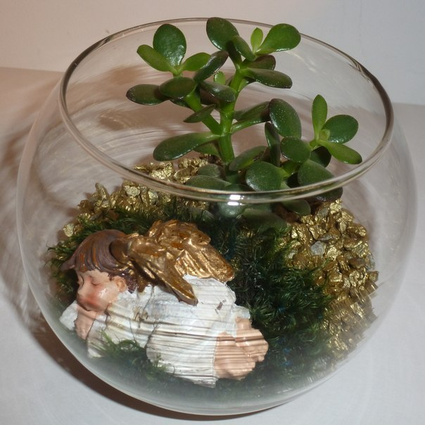 Флорариум пустыня своими руками 31