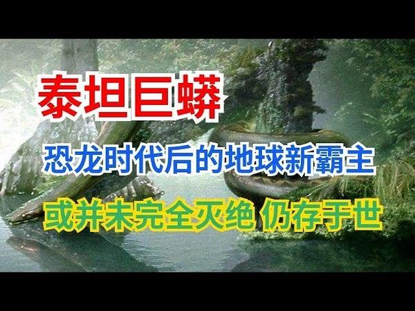 泰坦巨蟒恐龙时代后的地球新霸主,或并未完全灭绝,仍存于世!