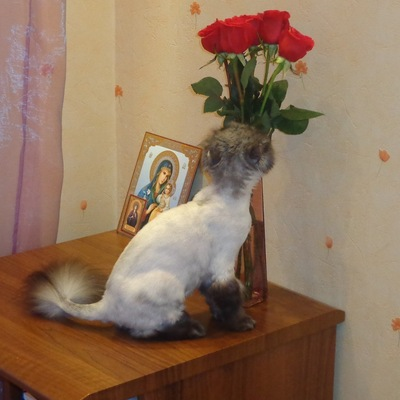 Валентина Волчёк, 26 сентября , Красноярск, id112606577