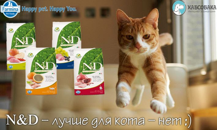 ХАБСОБАКА: Большое поступление знаменитых игрушек Гигви!!!!!! (Хабаровск) - Страница 5 6xavCgkbaA0