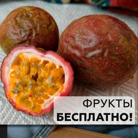 Кто хочет получить нашу спецкоробку сладких спелых фруктов абсолютно бесплатно? ⠀ Конечно,все хотят)) Мы объявляем РОЗЫГРЫШ! ⠀ О
