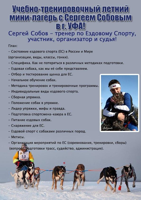 http://cs620727.vk.me/v620727957/c1d8/rB6XR6YLQeA.jpg