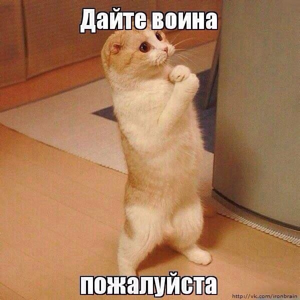 http://cs418518.vk.me/v418518061/68c0/cwUh3lJI2bU.jpg