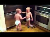 Самые прикольные видео с малышами.